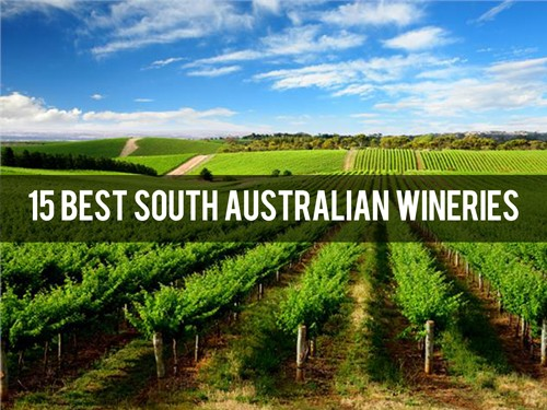 15 Best South Australian Wineries
